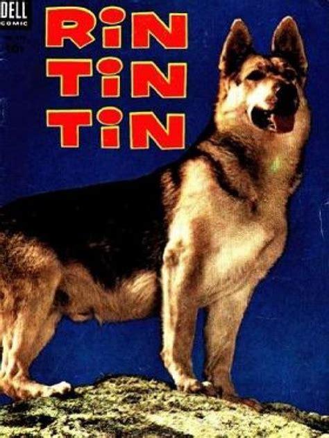 film jadul rintintin the adventures of rin tin tin tv series 1954