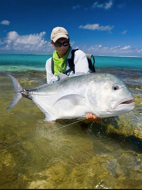 boating with bae ta bay flats fishing 86 best images about saltwater fishing on pinterest mahi
