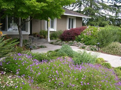 17 best images about lawnless front yard on pinterest landscaping grasses and lawn alternative