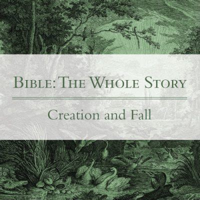 creation gospel workbook one the creation foundation the creation gospel books before the beginning gospel in