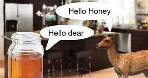 hello honey hello cheesy joke