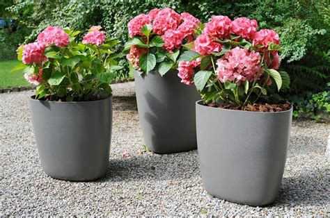 vasi giardino plastica vasi da giardino vasi per piante tipologie di vasi per
