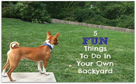 fun stuff to do in your backyard 5 fun things to do in your own backyard the good mama