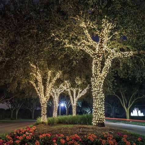 white string lights outdoor ora 100 led solar powered outdoor string lights bright