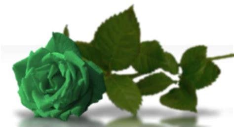 imagenes de flores verdes lorena alvarado