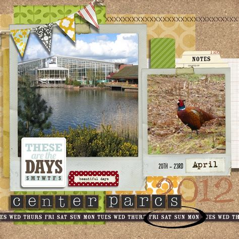 sle layout of scrapbook 17 best images about nature scrapbook layouts on pinterest