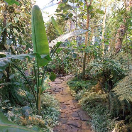 botanische tuin kopenhagen wat kun je doen in kopenhagen 5 leuke bezienswaardigheden