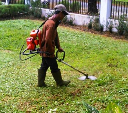 Mesin Potong Rumput Gendong Paling Murah Daftar Harga Mesin Pemotong Rumput Murah Terbaru Bulan