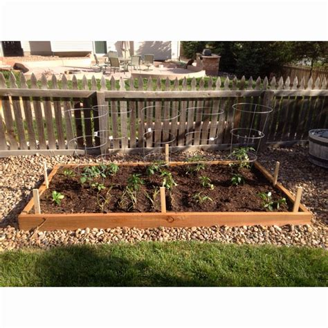 vegetable gardening in colorado 47 best images about vegetable gardening on