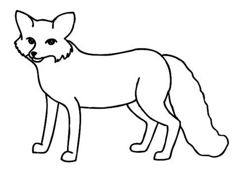 coloring page gray fox gray fox page printable coloring pages