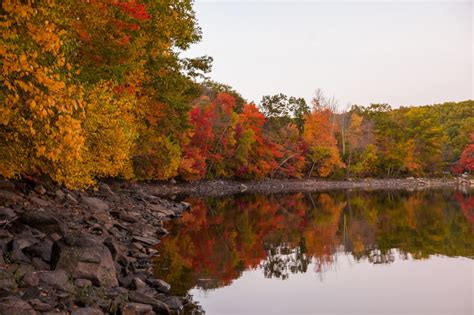 new fall foliage new picture guides where to see fall foliage in bucks county pennsylvania
