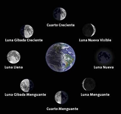 etapas de la luna 2016 duendes avalon dieta de la luna 191 c 243 mo influyen en