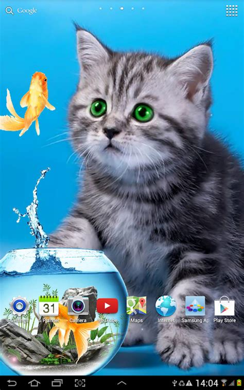 wallpaper cat android cat live wallpaper android apps on google play