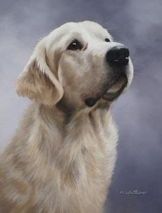 golden retriever puppies in medford oregon 1000 images about pastel on pastel drawing pastel paintings and