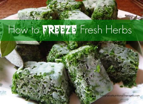 how to freeze fresh herbs melissa malinowski nd