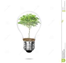 incandescent light bulb with plant stock image image 31398731
