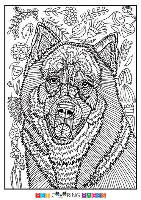 siberian husky coloring book stress relief coloring book for grown ups animal coloring book books 2954 best images about mandaly zv 237 蝎ata on