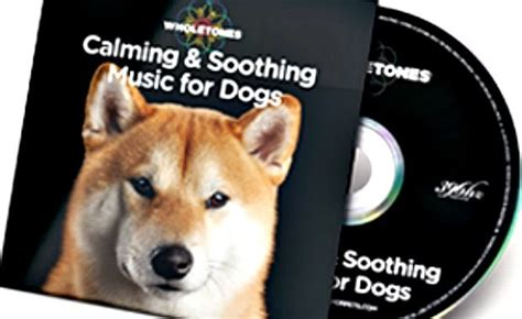 wholetones for dogs these tunes are meant to soothe your s anxiety