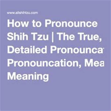 shih tzu pronunciation dictionary 1000 images about shih tzu important info on shih tzu your and pets