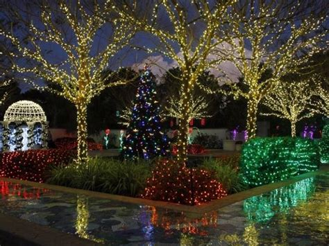 botanical gardens cristmas lights lights in the gardens visit st petersburg clearwater florida