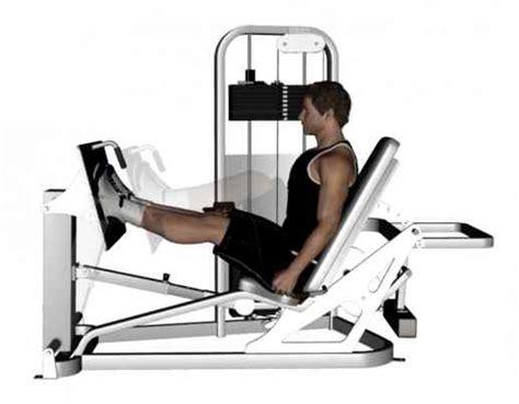 seated leg press exercise 45 degree leg press bodybuilding wizard