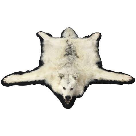 Wolf Rug For Sale by Vintage White Wolf Skin Rug For Sale At 1stdibs