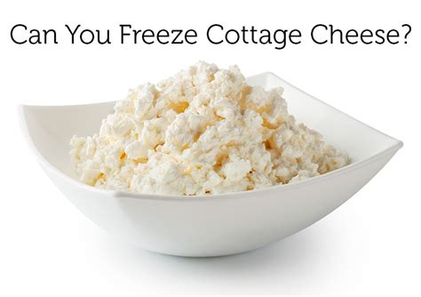 cottage cheese can you freeze cottage cheese and eat it later this might