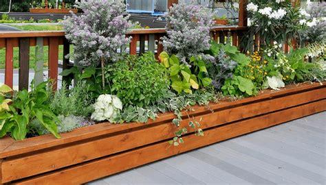 alles für garten und terrasse design hochbeet balkon