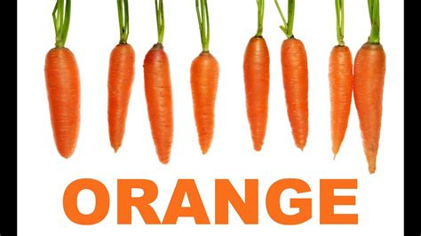 orange color song learn the colors orange color color song