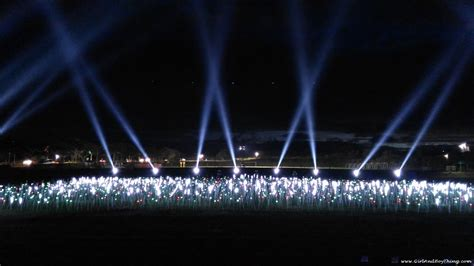 Nuvali Launches The Magical Field Of Lights And Sound Show Lights And Sounds