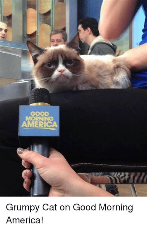 Grumpy Cat Good Morning Meme - 25 best memes about good morning and grumpy cat good