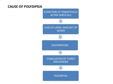 diabetes polydipsia mechanism history  type  diabetes