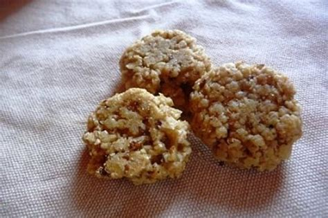 cuisiner pour chien cuisiner ses propres biscuits pour chiens nourrir