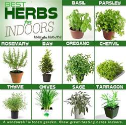 time to start herbs people excited about co existence