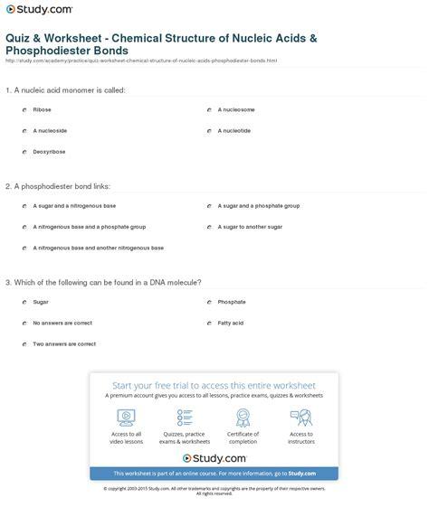 Nucleic Acids Worksheet Answers by Nucleic Acids Worksheet Deployday