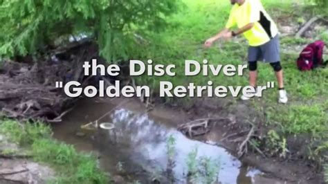 golden retriever disc golf disc diver quot golden retriever quot for disc golf demo by discnation