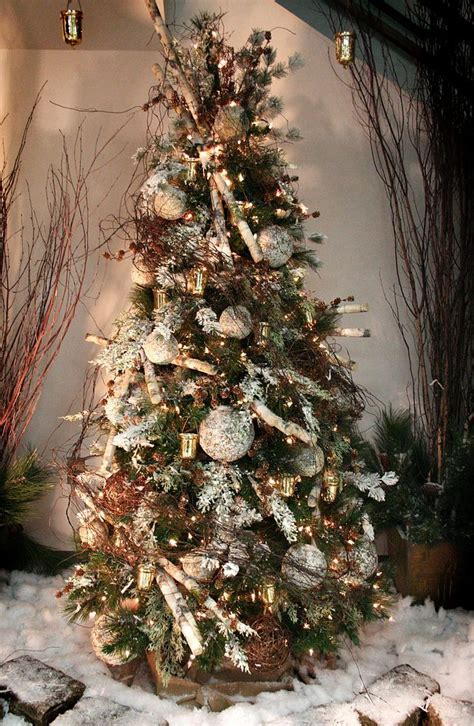 1000 images about christmas trees woodland on pinterest