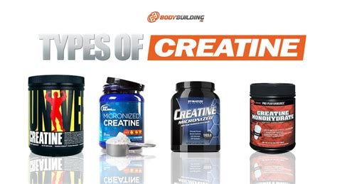 types of creatine 6 popular types of creatine that you didn t