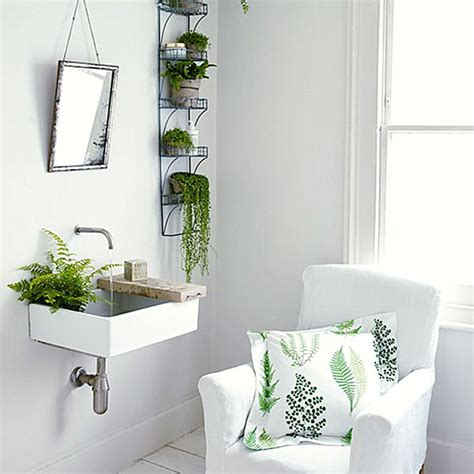 small plants for bathrooms the best bathroom plants for your interior