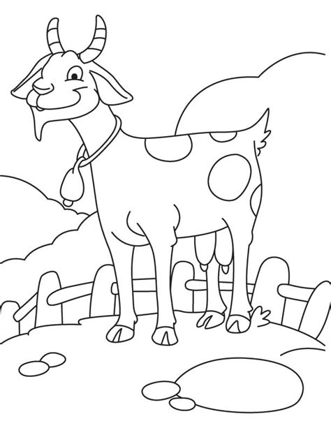 pygmy goat coloring page glad goat coloring page pygmy goat coloring page