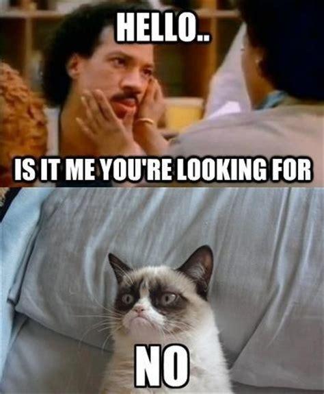 Lionel Richie Meme - grumpy cat hello lionel ritchie