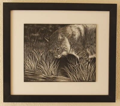 framing photos without glass heather ward wildlife art framing scratchboard art
