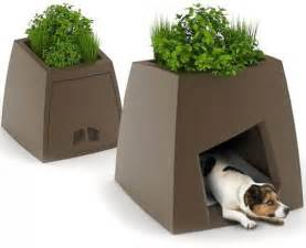 the kokon modern pet house sprouts a green roof