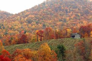 smoky mountains fall colors southern a fall masterpiece the smokies