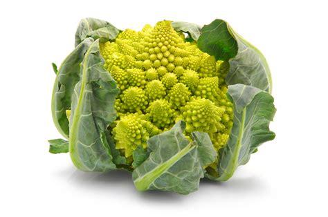 come cucinare il broccolo romanesco il broccolo romano o romanesco 0766news