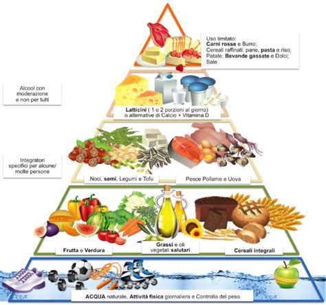 dieta alimentare corretta alimentazione le basi di una dieta sana e corretta