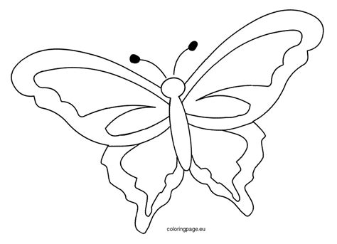 butterflies templates to print printable butterfly template coloring page