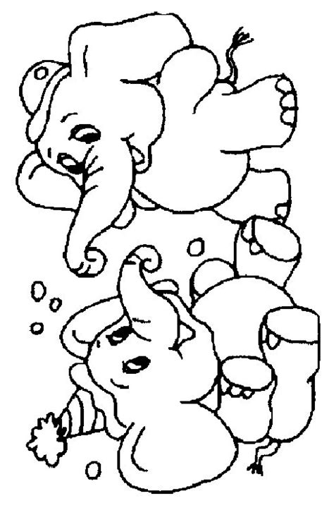 animal coloring pages elephant elephant coloring page animal coloring page picgifs com