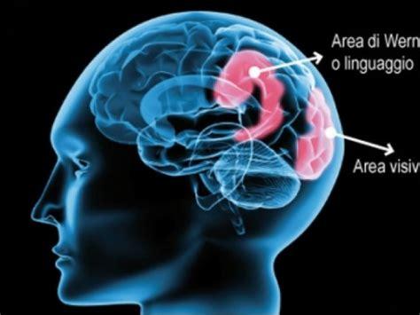 rottura vasi sanguigni ictus lesione cerebrale a causa di un vaso sanguigno