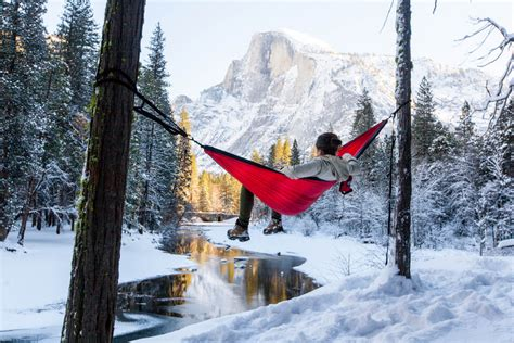 Hammock Winter snow winter tree landscape waterfall